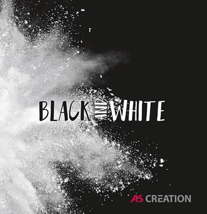 Collection de papiers peints «Black & White 4»